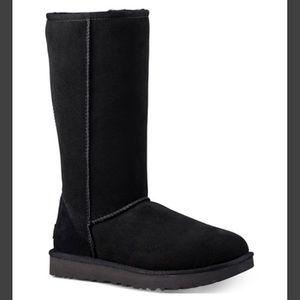 Ugg | NWOB tall boots